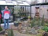 Kees Jan and his father's glasshouse (Garden Kees Jan, Alblasserdam, Netherlands)