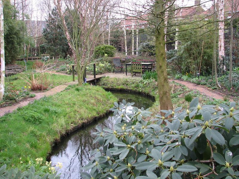 pond and woodland garden spring 2007 (Garden, Sjaak de Groot, De Zilk, Southern Holland)