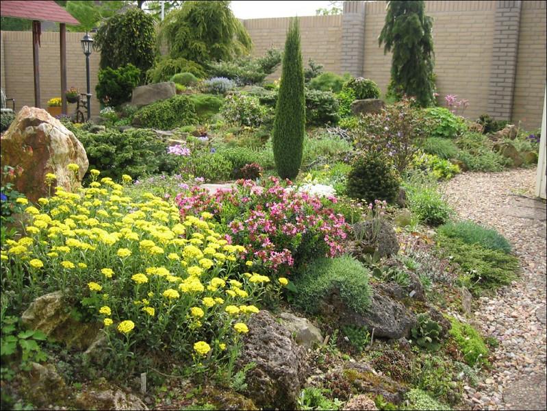 back garden (Garden Ab v. Dooremolen, Best)