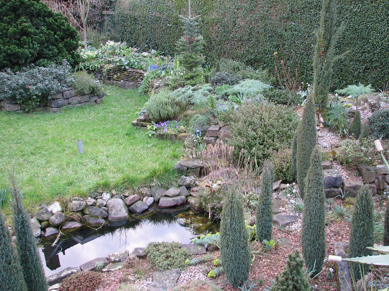 pond (Garden, Kees Jan, Alblasserdam, Netherlands)