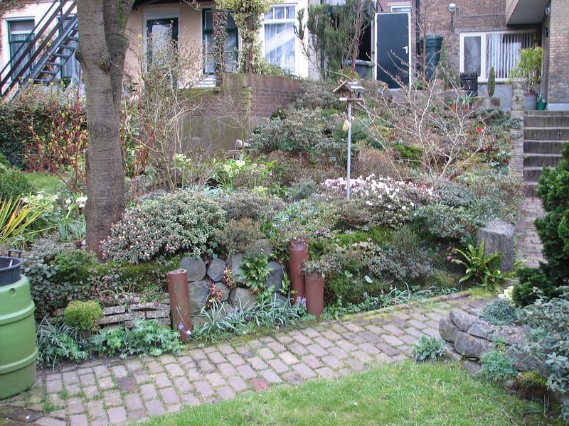 Backyard (Garden Kees Jan, Alblasserdam, Netherlands)