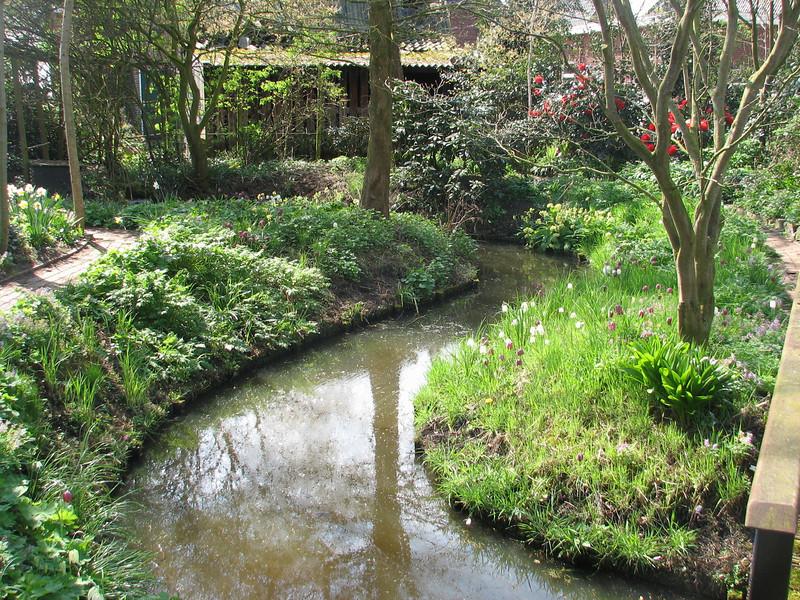backyard (Spring 2009 Garden, Sjaak de Groot, De Zilk, South Netherland)