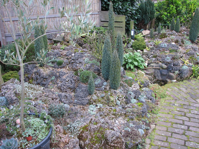 Rockgarden (Garden Kees Jan, Alblasserdam, Netherlands)