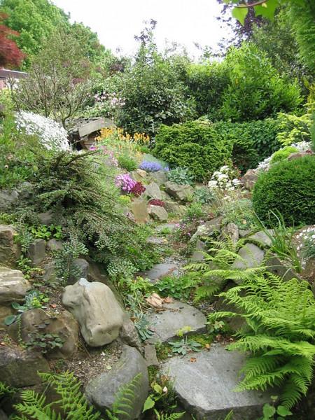 rockgarden (Garden, Etiene Sinke, Eindhoven)