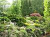backgarden (Garden, Etiene Sinke, Eindhoven)
