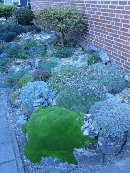Side-garden of Ger & Mariet van den Beuken (Horst, Limburg)