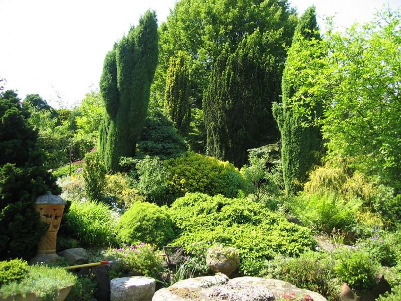 back garden (Garden Theo v.d. Zanden, Eindhoven)