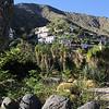 Jardin Botanico del Descubrimiento, Argaga, N of Vallehermoso