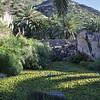 Pond, Jardin Botanico del Descubrimiento, Argaga, N of Vallehermoso