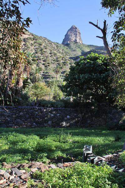 Jardin Botanico del Descubrimiento, Argaga with Roque El Cano, N of Vallehermoso