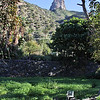 Jardin Botanico del Descubrimiento, Argaga with Roque El Cano, N of Vallehermoso