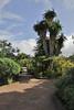 Visitors centre and botanical garden, NP Garajonay, Juege de Bolas Centro de Vistantes, Hormigua