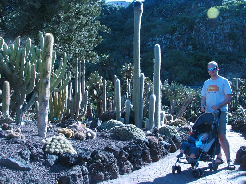 Cactus garden (Jardin Canaria)