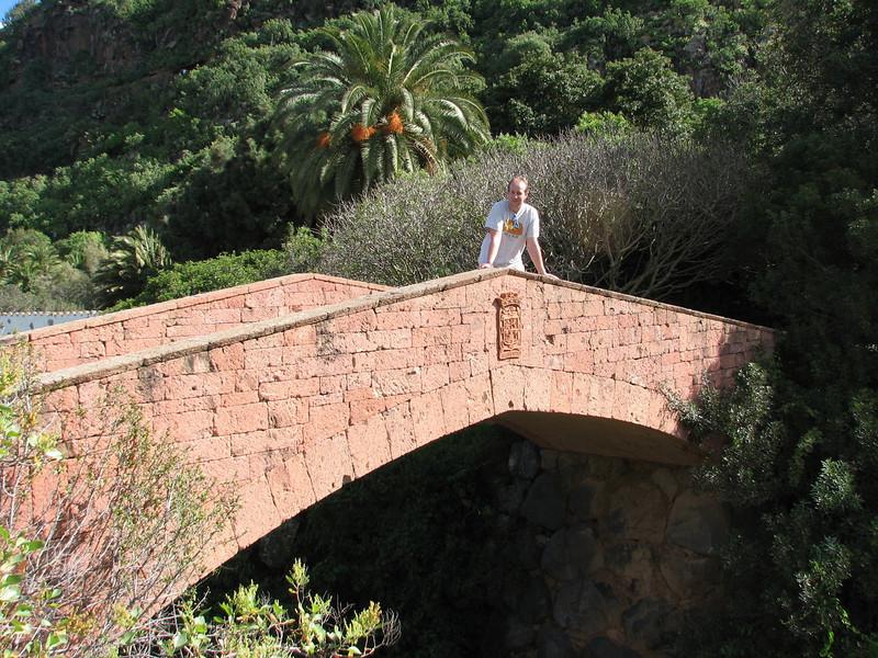 bridge (Jardin Canaria)