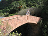 bridge (Jardin Canaria)