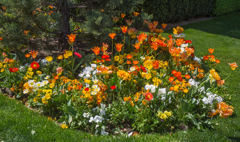 Gardens on Temple Square