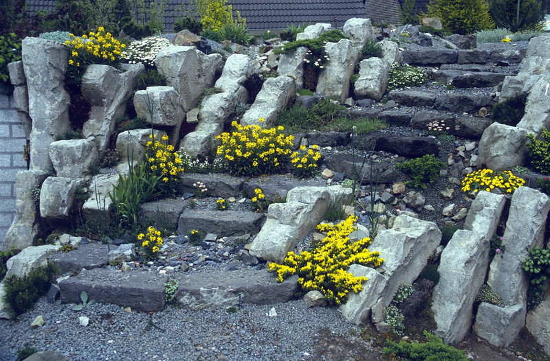 the first plants grows on the stairs (construction rock garden 1991)