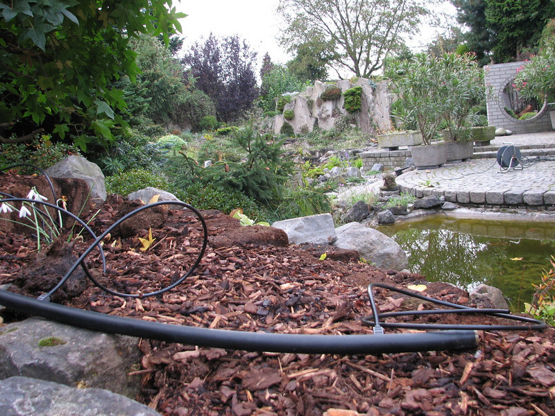 pomp hose before burying underground (creation peat/woodland garden 2007)