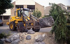 my biggest stone in the rockgarden, 1500kg weight (  construction rockgarden 1993)