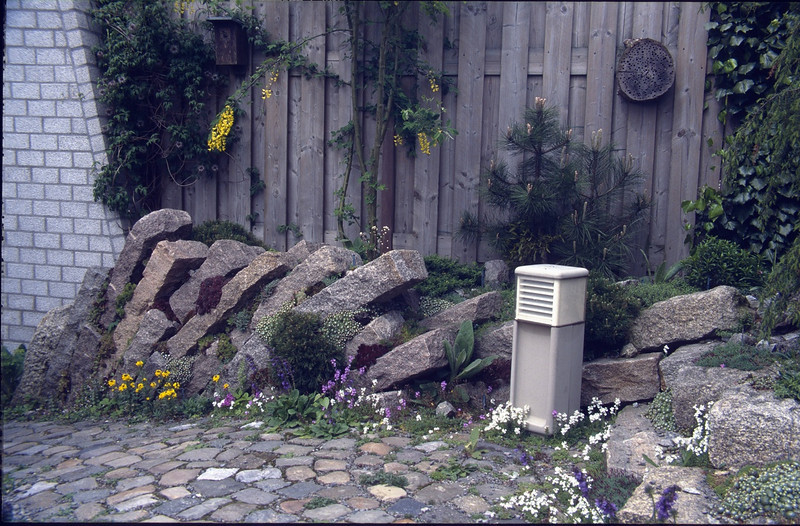 habitat of dry loving plants (construction rock garden 1992)