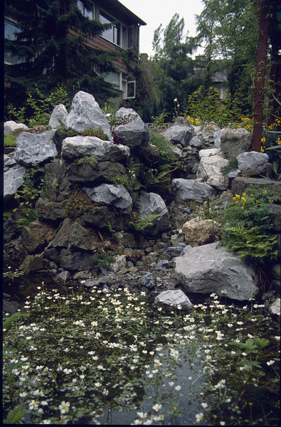 waterfall, rockgarden and pond (1985-1989)
