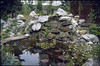 the rockgarden