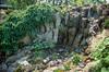 Wet peat wall