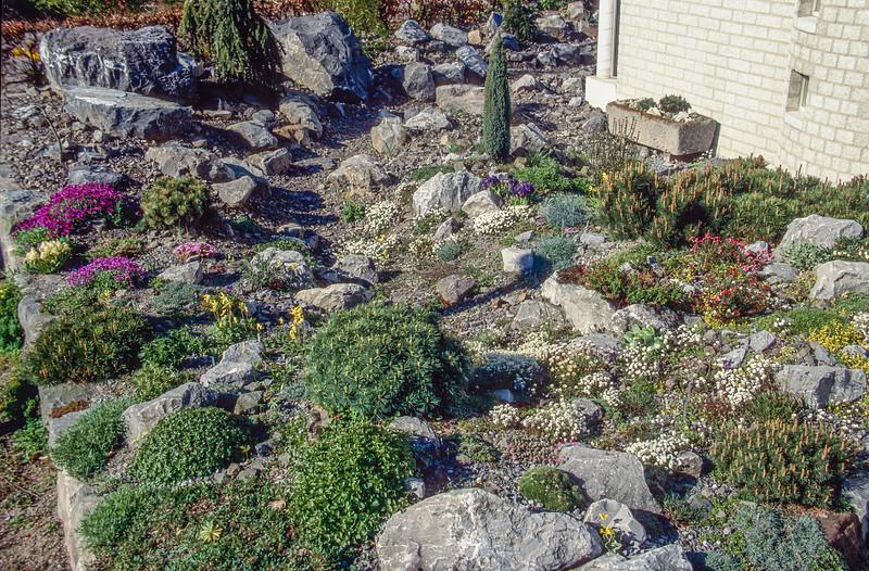 Front garden 1995