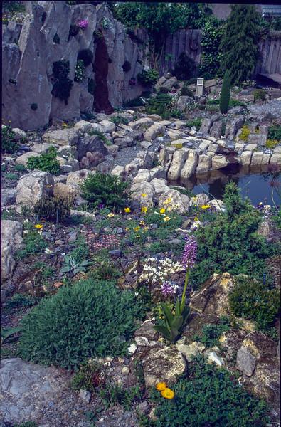 Garden, 1995