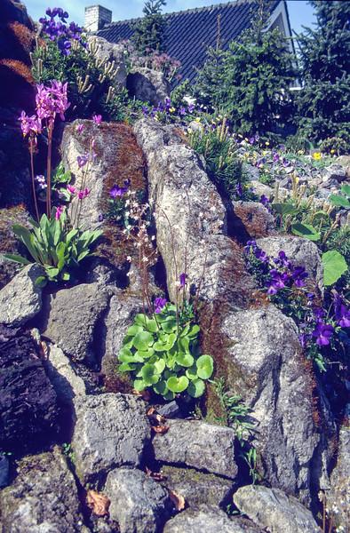 Garden, 1997