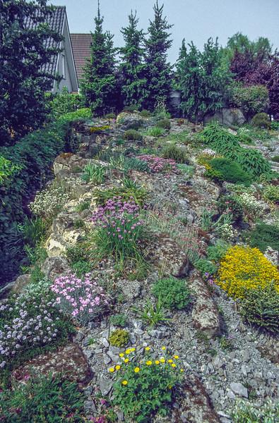 Rock Garden,1997