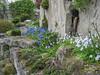 Garden, April 2004