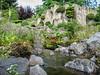 Rock-garden, 2008