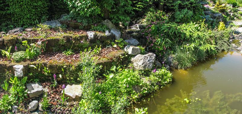 Peat garden, 2009