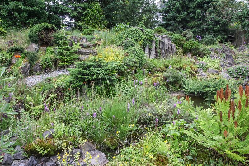 Garden, 2013