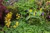 habitat peatgarden