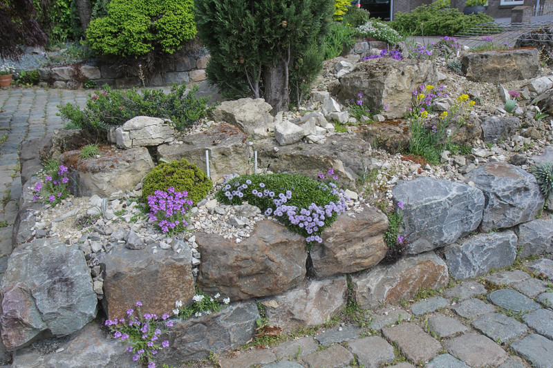 raised bed, front garden