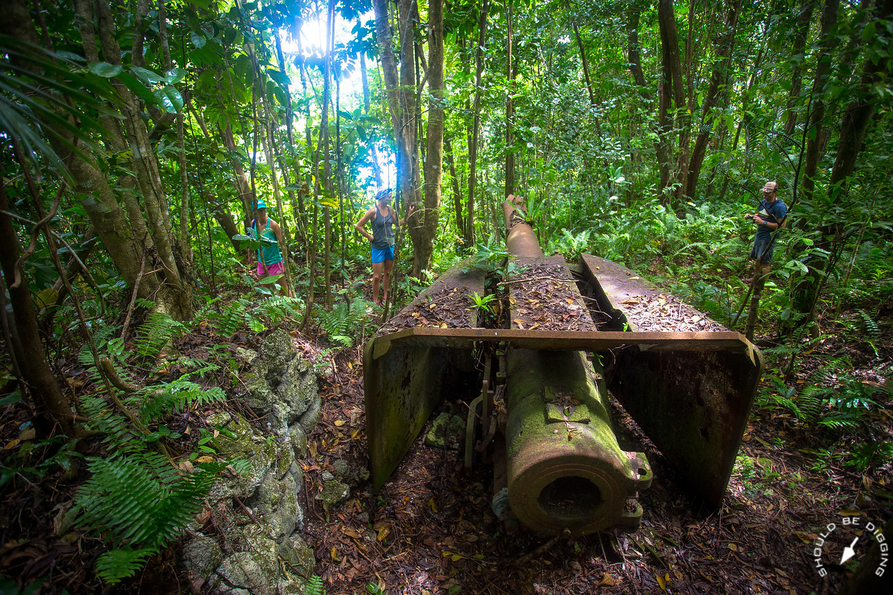 Checking out emplaced Japanese artillery on Ngeruktabel, Palau