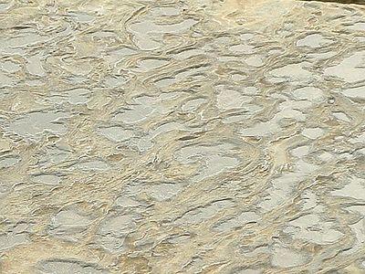 sandstone beach formation -- La Jolla, 28 Jun 2003