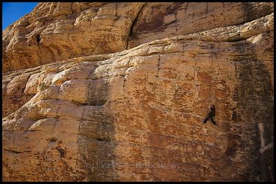Trophy wall climbing.