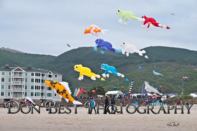 Rockaway Beach Kite Festival 2015 #1467