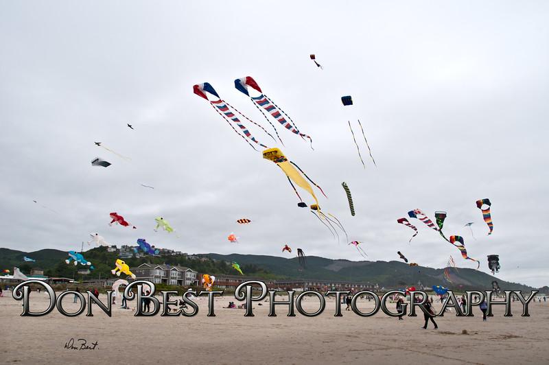 Rockaway Beach Kite Festival 2015 #1469