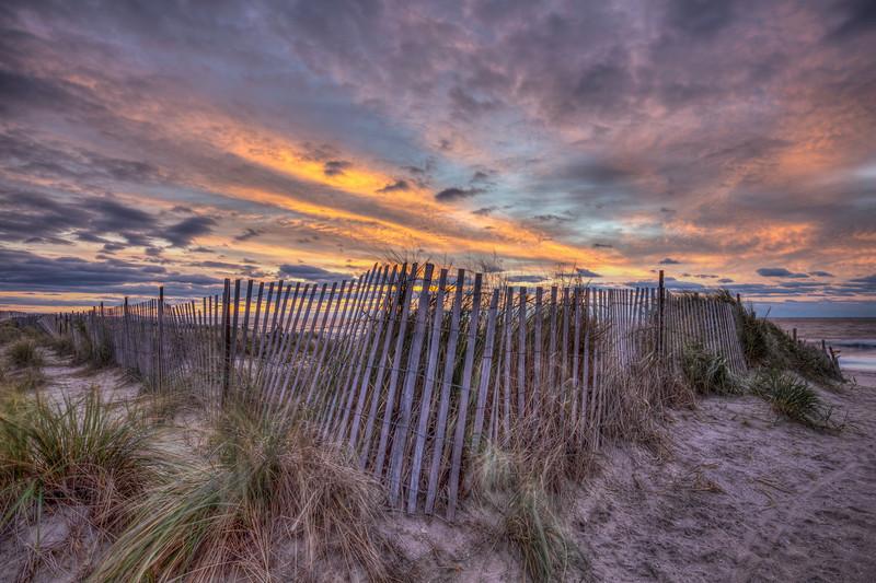 Dawn At Fence
