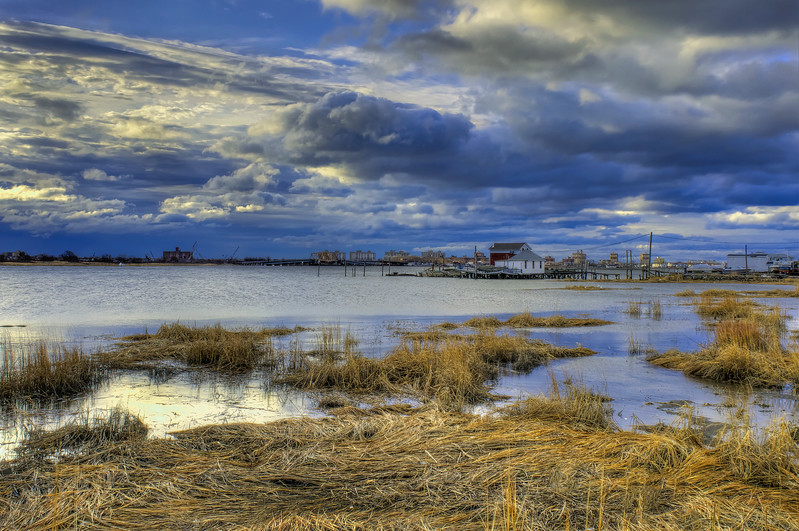 Marsh In Jamaica Bay