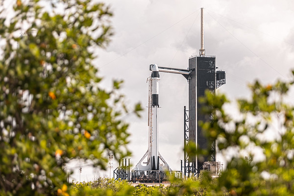 CRS-22 will mark the fifth capsule that SpaceX has flown to the Space Station in the previous 12 months.