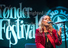 Tønder festival 2016, Toender Festival, Tonder festival,