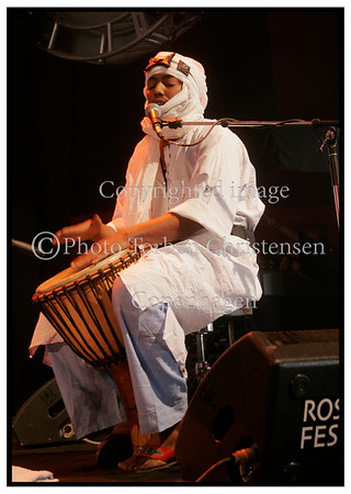 Roskilde Festival 2005, Tinariwen