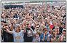 Roskilde Festival 2008, Bob Hund, Festival Goers