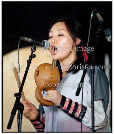 Roskilde Festival 2010, Dulsori