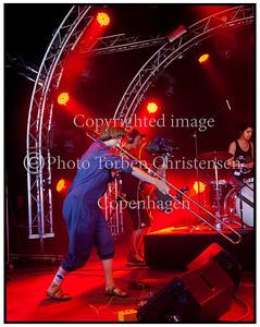 Selvhenter, Roskilde Festival 2011